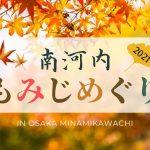南河内,紅葉,大阪紅葉