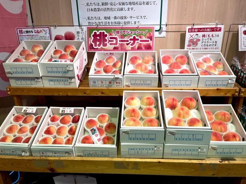 九度山,道の駅柿の郷くどやま,道の駅,くどやま,よってって,桃